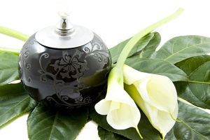 Black oil lamp on green leaf with white flower over white